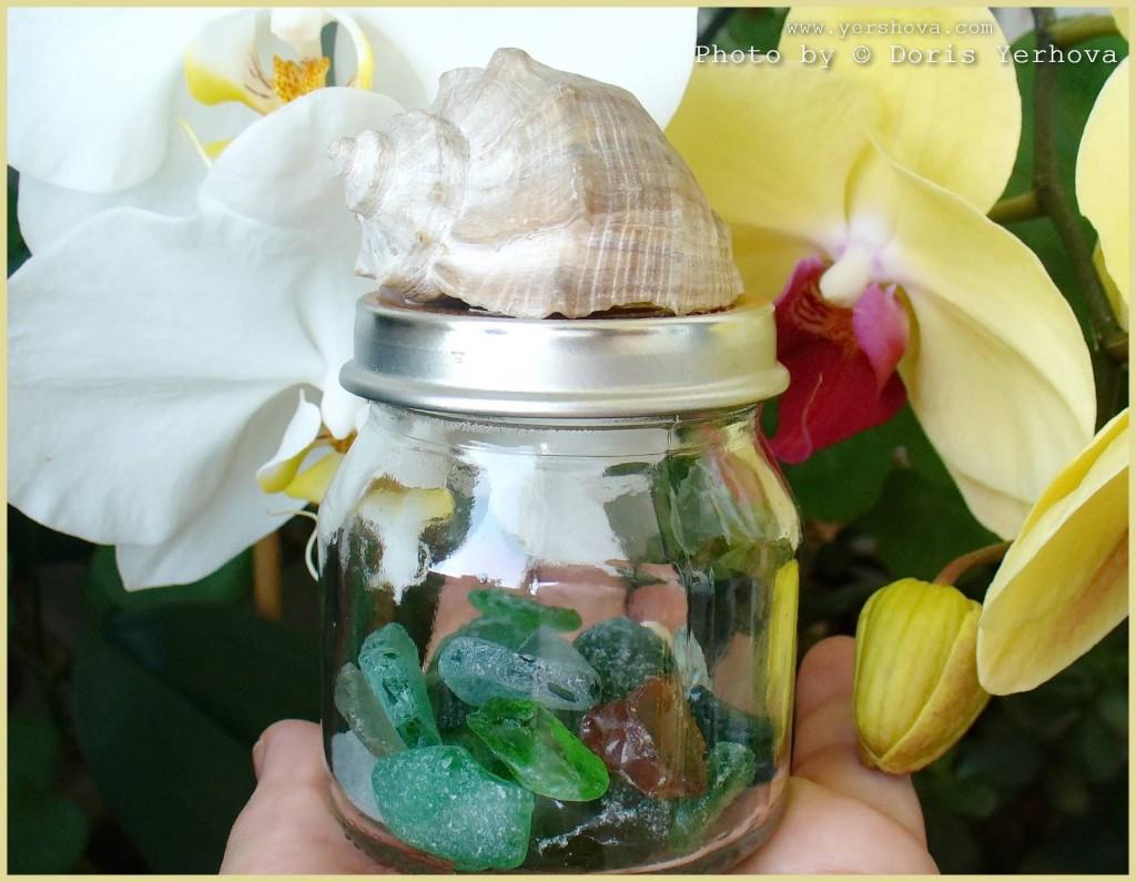 морское стекло в банке и орхидеи